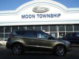 2013 Ginger Ale Metallic Ford Escape SEL 2.0L EcoBoost 4WD #73581355
