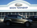 2013 Ginger Ale Metallic Ford Escape SEL 1.6L EcoBoost #73581349