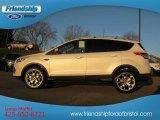 2013 White Platinum Metallic Tri-Coat Ford Escape Titanium 2.0L EcoBoost 4WD #73581229