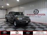 2005 Phantom Gray Pearl Toyota Tundra SR5 Double Cab #73680750
