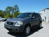2006 Dark Shadow Grey Metallic Ford Escape XLT V6 #7353993