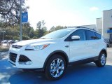 2013 White Platinum Metallic Tri-Coat Ford Escape SEL 2.0L EcoBoost #73808460