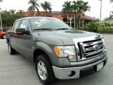 2010 Sterling Grey Metallic Ford F150 XLT SuperCrew #73808449