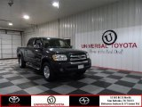 2005 Timberland Green Mica Toyota Tundra SR5 Double Cab #73808394