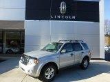 2009 Brilliant Silver Metallic Ford Escape XLT #73866794