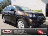 2013 Kona Coffee Metallic Honda CR-V EX-L #73866647