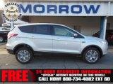 2013 Ingot Silver Metallic Ford Escape SEL 1.6L EcoBoost 4WD #73934481