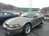 2001 Ford Mustang Cobra Coupe Data, Info and Specs