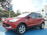 2013 Ruby Red Metallic Ford Escape SEL 1.6L EcoBoost #74039488
