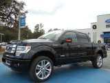 2013 Ford F150 Limited SuperCrew 4x4 Data, Info and Specs