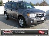 2009 Sterling Grey Metallic Ford Escape XLT V6 #74095474