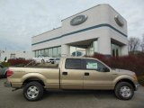 2013 Pale Adobe Metallic Ford F150 XLT SuperCrew 4x4 #74156764