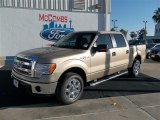 2013 Pale Adobe Metallic Ford F150 XLT SuperCrew #74156893