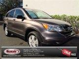 2010 Urban Titanium Metallic Honda CR-V EX #74247143