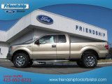 2013 Pale Adobe Metallic Ford F150 XLT SuperCab 4x4 #74256145