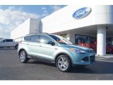 2013 Frosted Glass Metallic Ford Escape SE 2.0L EcoBoost #74256241
