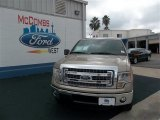 2013 Pale Adobe Metallic Ford F150 XLT SuperCrew #74307580