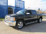 2013 Fairway Metallic Chevrolet Silverado 1500 LT Crew Cab 4x4 #74307677