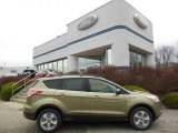 2013 Ginger Ale Metallic Ford Escape SE 1.6L EcoBoost 4WD #74307506