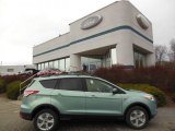2013 Frosted Glass Metallic Ford Escape SE 1.6L EcoBoost 4WD #74307503