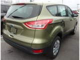 2013 Ginger Ale Metallic Ford Escape S #74308141