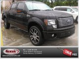 2010 Ford F150 Harley-Davidson SuperCrew 4x4