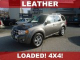 2011 Sterling Grey Metallic Ford Escape Limited V6 4WD #74368637