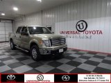 2011 Pale Adobe Metallic Ford F150 XLT SuperCrew 4x4 #74368748