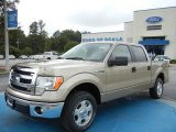 2013 Pale Adobe Metallic Ford F150 XLT SuperCrew #74368810