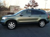 2009 Green Tea Metallic Honda CR-V EX-L 4WD #74434112