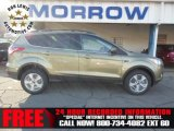 2013 Ginger Ale Metallic Ford Escape SE 1.6L EcoBoost 4WD #74433843
