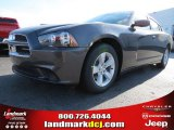 2013 Granite Crystal Dodge Charger SE #74433904