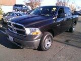 2009 Brilliant Black Crystal Pearl Dodge Ram 1500 ST Crew Cab 4x4 #74489798