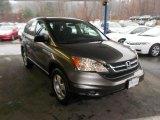 2010 Polished Metal Metallic Honda CR-V LX AWD #74543890
