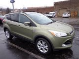 2013 Ginger Ale Metallic Ford Escape SEL 2.0L EcoBoost 4WD #74543802