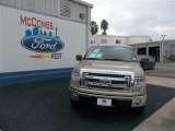 2013 Pale Adobe Metallic Ford F150 XLT SuperCrew #74572529