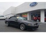 2003 Black Ford Mustang Cobra Convertible #74572618