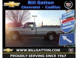 1999 Light Pewter Metallic Chevrolet Silverado 1500 LS Regular Cab 4x4 #74572961
