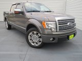 2010 Sterling Grey Metallic Ford F150 Platinum SuperCrew #74572682