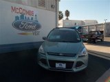 2013 Frosted Glass Metallic Ford Escape SE 1.6L EcoBoost #74732313