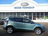 2013 Frosted Glass Metallic Ford Escape SE 2.0L EcoBoost 4WD #74732515