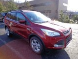 2013 Ruby Red Metallic Ford Escape SE 2.0L EcoBoost 4WD #74850661