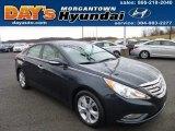 2013 Pacific Blue Pearl Hyundai Sonata Limited #74879832
