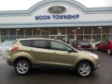2013 Ginger Ale Metallic Ford Escape SE 2.0L EcoBoost #74879533