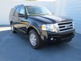 2013 Tuxedo Black Ford Expedition XLT #74879569