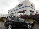 2013 Tuxedo Black Metallic Ford Escape SE 2.0L EcoBoost 4WD #74925034