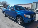 2010 Blue Flame Metallic Ford F150 STX SuperCab #74925072