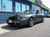 2003 Dark Shadow Grey Metallic Ford Mustang Cobra Convertible #74973812