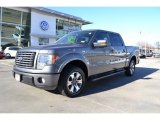 2010 Sterling Grey Metallic Ford F150 FX2 SuperCrew #74973468