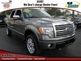 2010 Sterling Grey Metallic Ford F150 Platinum SuperCrew 4x4 #74973649